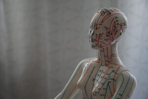 Akupunktur Doll showing Meridians and acupuncture points in the human body